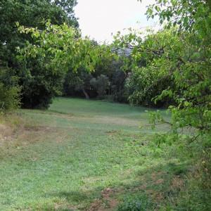 reportagen_aus_erfurt_und_thüringen_2016