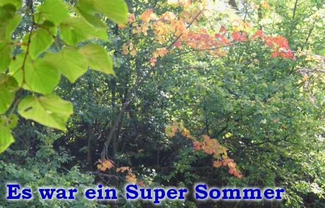 SuperSommer