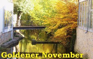 goldener_november_in_erfurt