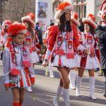 erfurter_karneval_2017_schwanseer_schwaene